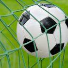 Откуда появилось название сборной Австралии по футболу «Socceroos»?
