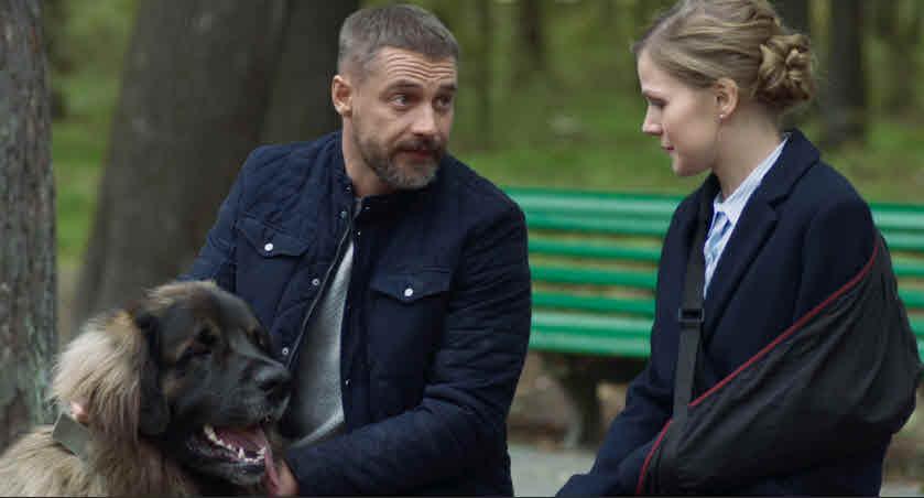 Сериал Год собаки - содержание серий